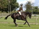 Image 11 in AUTUMN HORSE SHOW  TRINITY PARK. 12 SEPT. 2015