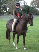 Image 15 in AUTUMN HORSE SHOW  TRINITY PARK. 12 SEPT. 2015