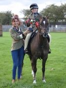 Image 17 in AUTUMN HORSE SHOW  TRINITY PARK. 12 SEPT. 2015