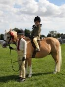 Image 20 in AUTUMN HORSE SHOW  TRINITY PARK. 12 SEPT. 2015