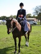 Image 21 in AUTUMN HORSE SHOW  TRINITY PARK. 12 SEPT. 2015
