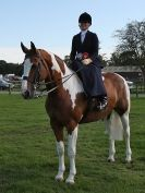 Image 23 in AUTUMN HORSE SHOW  TRINITY PARK. 12 SEPT. 2015