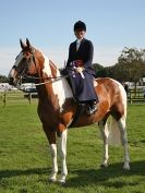 Image 24 in AUTUMN HORSE SHOW  TRINITY PARK. 12 SEPT. 2015