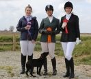DRESSAGE AT MARTHAM. THE ROSETTES.