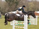 GT WITCHINGHAM INT. 24 MARCH 2016 SHOW JUMPING NOVICE SECTION E.
