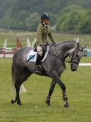 Image 12 in HOUGHTON INTL. 2016. BURGHLEY YOUNG EVENT HORSE 4YO SERIES.
