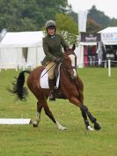Image 19 in HOUGHTON INTL. 2016. BURGHLEY YOUNG EVENT HORSE 4YO SERIES.