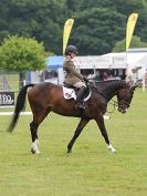 Image 30 in HOUGHTON INTL. 2016. BURGHLEY YOUNG EVENT HORSE 4YO SERIES.
