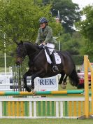 Image 9 in HOUGHTON INTL. 2016. BURGHLEY YOUNG EVENT HORSE 4YO SERIES.