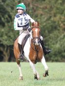Image 26 in BECCLES AND BUNGAY RC. HUNTER TRIAL 16. OCT. 2016