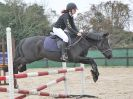 Image 1 in DEBEN RIDING CLUB XMAS SHOW JUMPING. CLASS 4