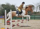Image 20 in DEBEN RIDING CLUB XMAS SHOW JUMPING. CLASS 4