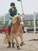 Image 11 in DEBEN RIDING CLUB. XMAS SHOW JUMPING. 10 DEC. 2016. CLASS 1