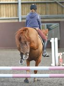 Image 8 in WORLD HORSE WELFARE. SHOW JUMPING. 21 APRIL 2018