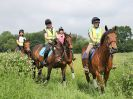 Image 3 in IPSWICH HORSE SOCIETY SPRING RIDE. 3 JUNE 2018