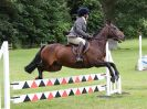 Image 14 in BECCLES AND BUNGAY RIDING CLUB OPEN SHOW. 17 JUNE 2018