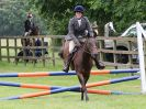 Image 15 in BECCLES AND BUNGAY RIDING CLUB OPEN SHOW. 17 JUNE 2018