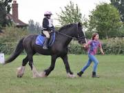 Image 14 in BECCLES AND BUNGAY RIDING CLUB. 19 AUGUST 2018