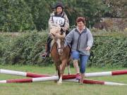 Image 27 in BECCLES AND BUNGAY RIDING CLUB. 19 AUGUST 2018