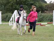 Image 29 in BECCLES AND BUNGAY RIDING CLUB. 19 AUGUST 2018