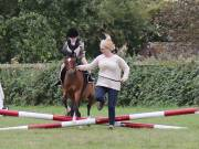 Image 5 in BECCLES AND BUNGAY RIDING CLUB. 19 AUGUST 2018