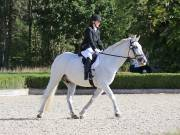 Image 13 in OPTIMUM EVENT MANAGEMENT. DRESSAGE. EASTON PARK STUD. 25TH AUGUST 2018