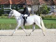 Image 18 in OPTIMUM EVENT MANAGEMENT. DRESSAGE. EASTON PARK STUD. 25TH AUGUST 2018