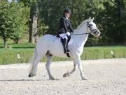 Image 19 in OPTIMUM EVENT MANAGEMENT. DRESSAGE. EASTON PARK STUD. 25TH AUGUST 2018