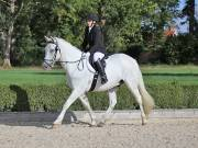 Image 25 in OPTIMUM EVENT MANAGEMENT. DRESSAGE. EASTON PARK STUD. 25TH AUGUST 2018