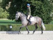 Image 29 in OPTIMUM EVENT MANAGEMENT. DRESSAGE. EASTON PARK STUD. 25TH AUGUST 2018