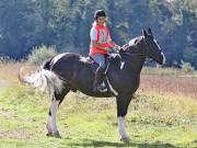 IPSWICH HORSE SOCIETY. CHARITY PLEASURE RIDE. 2ND SEPTEMBER 2018