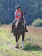 Image 10 in IPSWICH HORSE SOCIETY. CHARITY PLEASURE RIDE. 2ND SEPTEMBER 2018