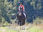 Image 2 in IPSWICH HORSE SOCIETY. CHARITY PLEASURE RIDE. 2ND SEPTEMBER 2018