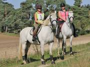 Image 20 in IPSWICH HORSE SOCIETY. CHARITY PLEASURE RIDE. 2ND SEPTEMBER 2018