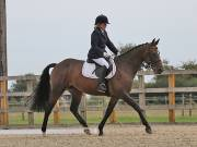 Image 17 in BROADLAND EQUESTRIAN CENTRE. DRESSAGE. 8TH SEPTEMBER 2018