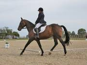 Image 2 in BROADLAND EQUESTRIAN CENTRE. DRESSAGE. 8TH SEPTEMBER 2018