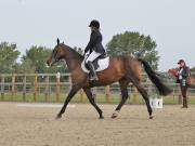 Image 4 in BROADLAND EQUESTRIAN CENTRE. DRESSAGE. 8TH SEPTEMBER 2018