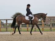Image 8 in BROADLAND EQUESTRIAN CENTRE. DRESSAGE. 8TH SEPTEMBER 2018