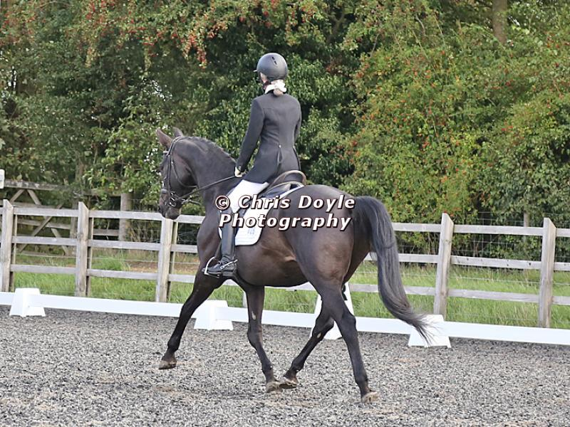 OPTIMUM EVENT MANAGEMENT. DRESSAGE AT GROVE HOUSE FARM. 9th SEPTEMBER 2018