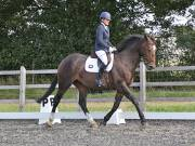 Image 10 in OPTIMUM EVENT MANAGEMENT. DRESSAGE AT GROVE HOUSE FARM. 9th SEPTEMBER 2018