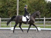 Image 12 in OPTIMUM EVENT MANAGEMENT. DRESSAGE AT GROVE HOUSE FARM. 9th SEPTEMBER 2018