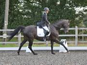 Image 21 in OPTIMUM EVENT MANAGEMENT. DRESSAGE AT GROVE HOUSE FARM. 9th SEPTEMBER 2018
