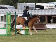 Image 16 in SOUTH NORFOLK PONY CLUB. ODE. 16 SEPT. 2018 THE GALLERY COMPRISES SHOW JUMPING, 60 70 AND 80, FOLLOWED BY 90 AND 100 IN THE CROSS COUNTRY PHASE.  GALLERY COMPLETE.