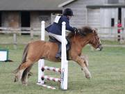 Image 27 in SOUTH NORFOLK PONY CLUB. ODE. 16 SEPT. 2018 THE GALLERY COMPRISES SHOW JUMPING, 60 70 AND 80, FOLLOWED BY 90 AND 100 IN THE CROSS COUNTRY PHASE.  GALLERY COMPLETE.