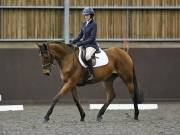 Image 124 in DRESSAGE AT WORLD HORSE WELFARE. 6TH OCTOBER 2018