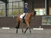 Image 128 in DRESSAGE AT WORLD HORSE WELFARE. 6TH OCTOBER 2018