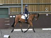 Image 131 in DRESSAGE AT WORLD HORSE WELFARE. 6TH OCTOBER 2018