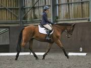 Image 133 in DRESSAGE AT WORLD HORSE WELFARE. 6TH OCTOBER 2018