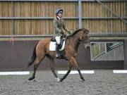 Image 134 in DRESSAGE AT WORLD HORSE WELFARE. 6TH OCTOBER 2018