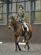 Image 141 in DRESSAGE AT WORLD HORSE WELFARE. 6TH OCTOBER 2018